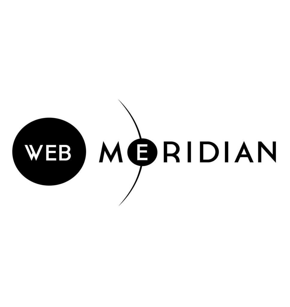 WebMeridian overview: who we are and what we do