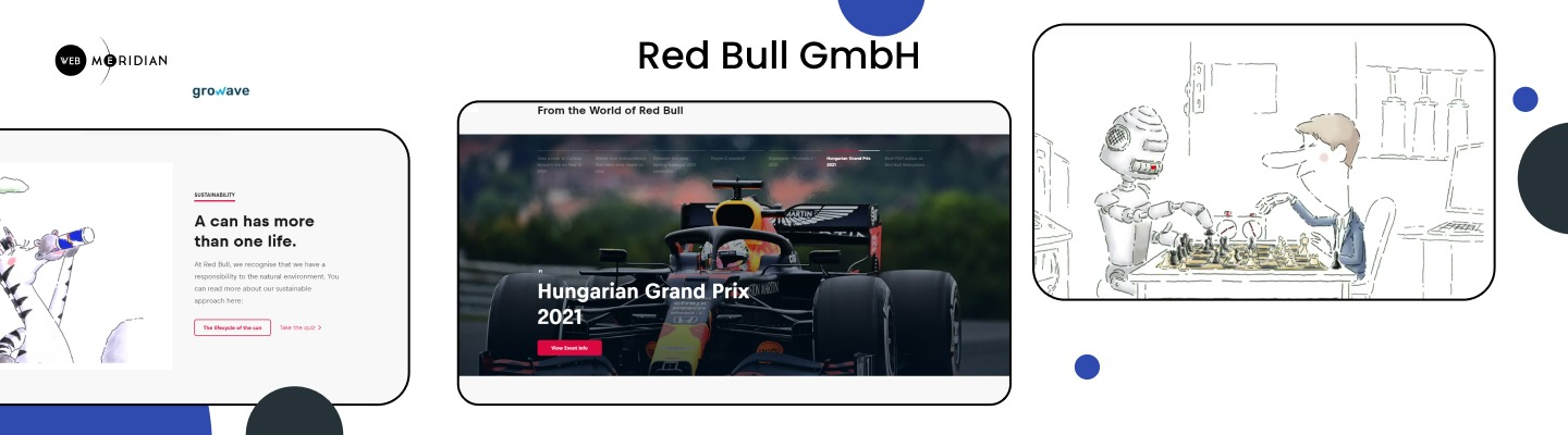 Red Bull GmbH - Shopify sample stores